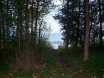 Back of our campsite - Craigleith
