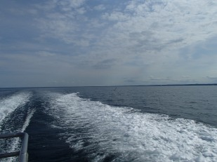 Perfect day on the ocean!