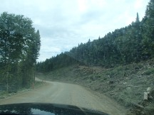 Route #180 Getting rough!