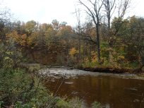 Bronte Creek