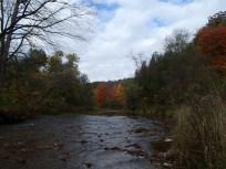 Beautiful Bronte Creek