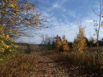 Blue Skies & Hiking