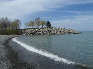 Beach at Fifty Point