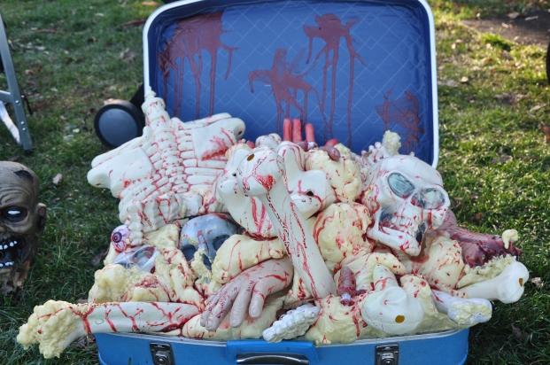 Suitcase of bones!