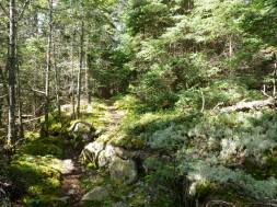 Echo Pond Trail